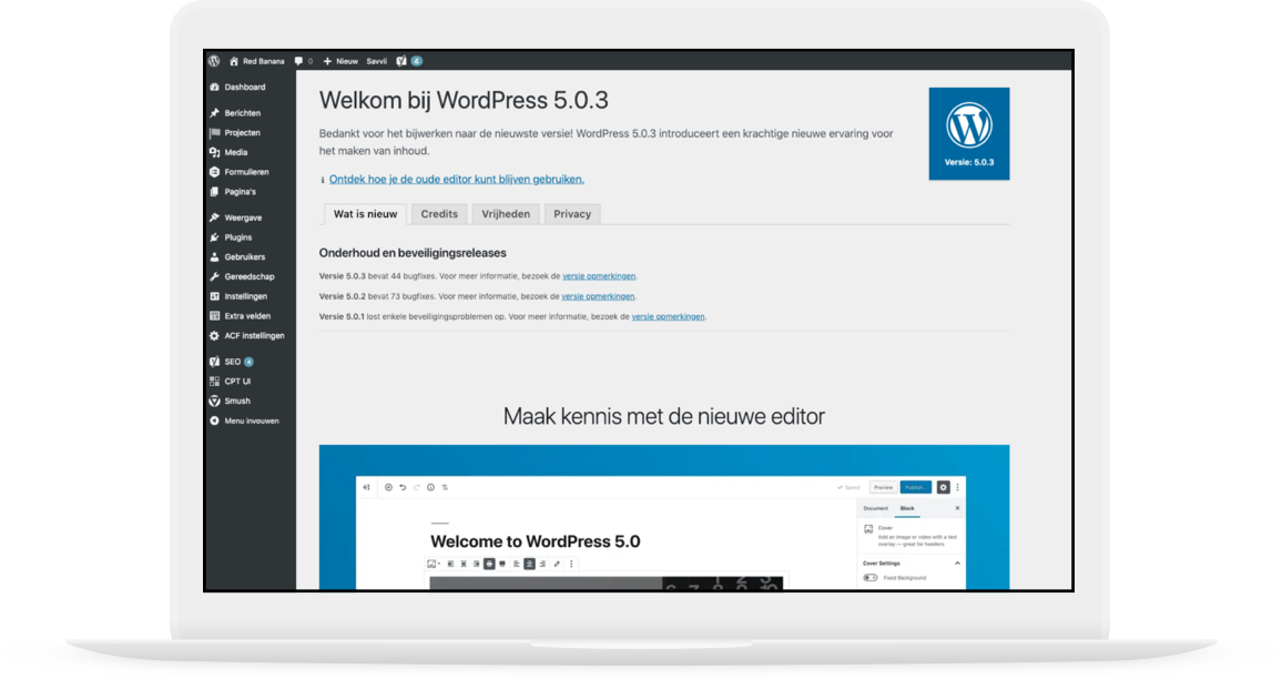 Wordpress backend cms