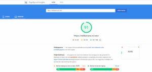 PageSpeed test voorbeeld