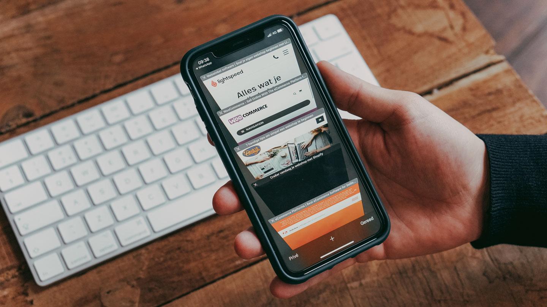 webshop e-commerce platformen verschillen